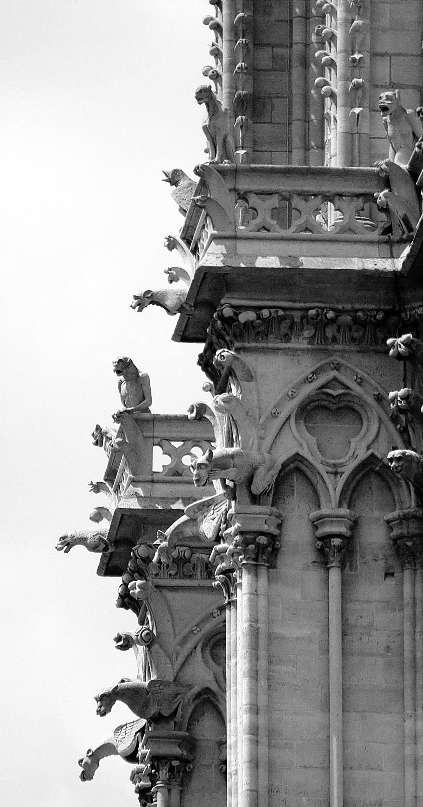 Gothic Gallery