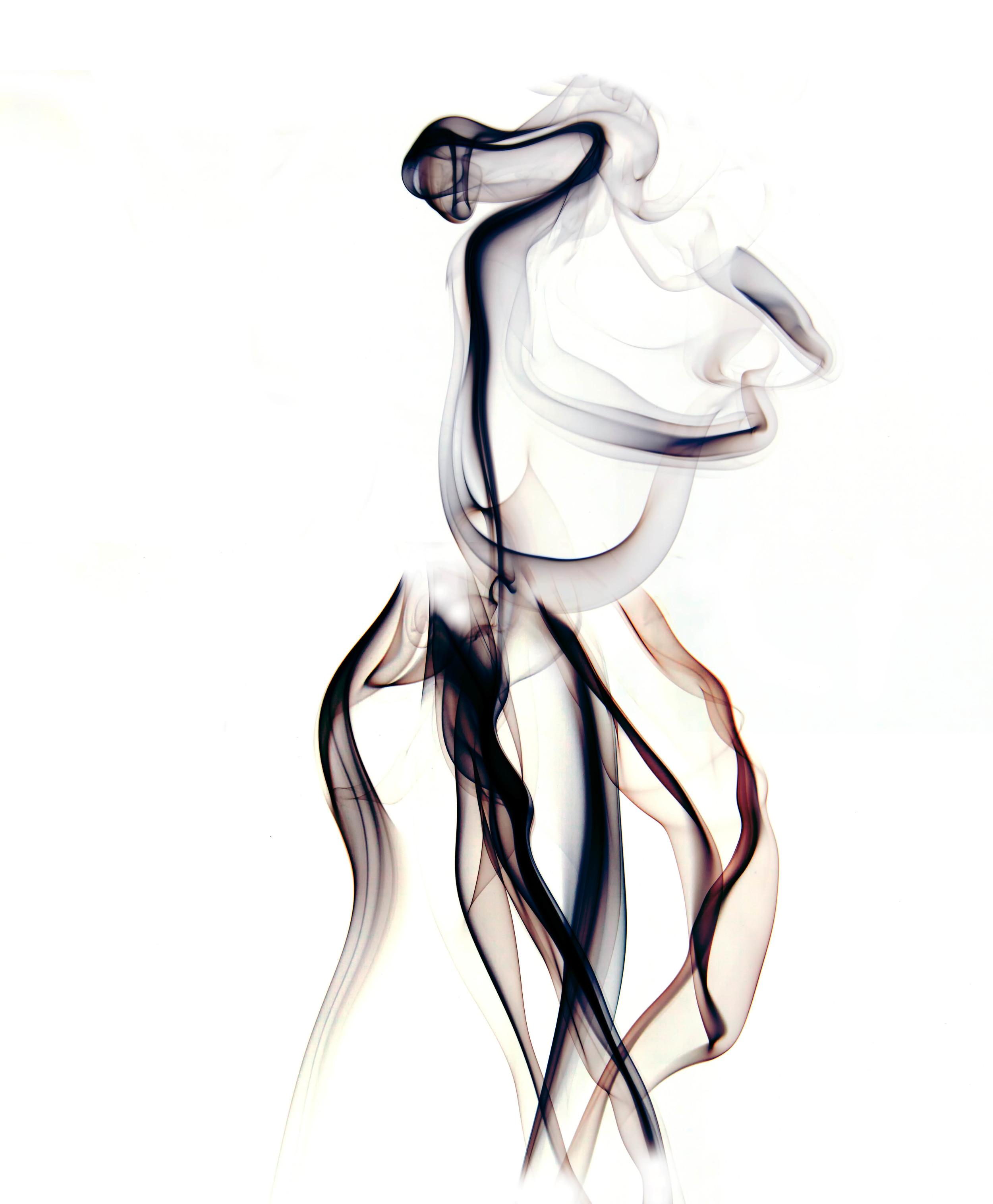 Dress Maker.jpg