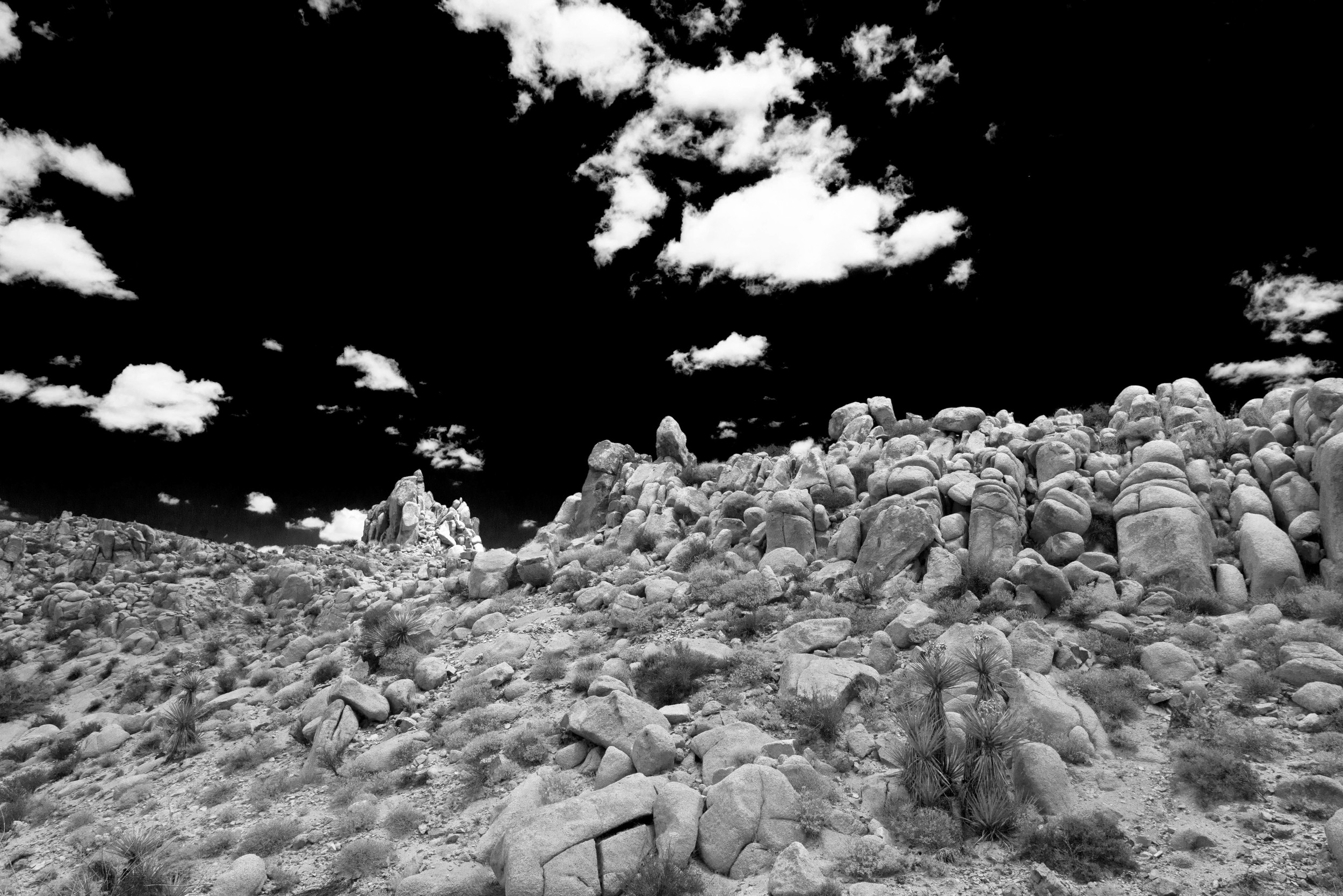 Cloud Fence.jpg