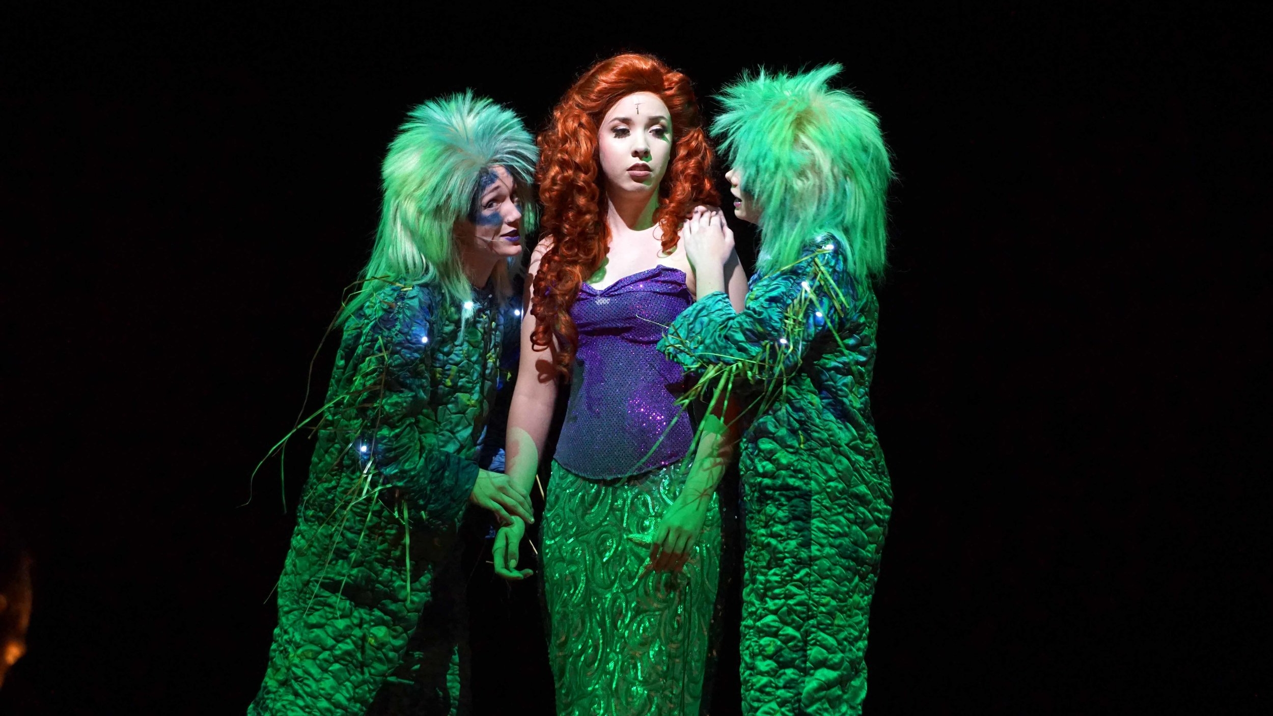 Nov11 LittleMermaid102.jpg