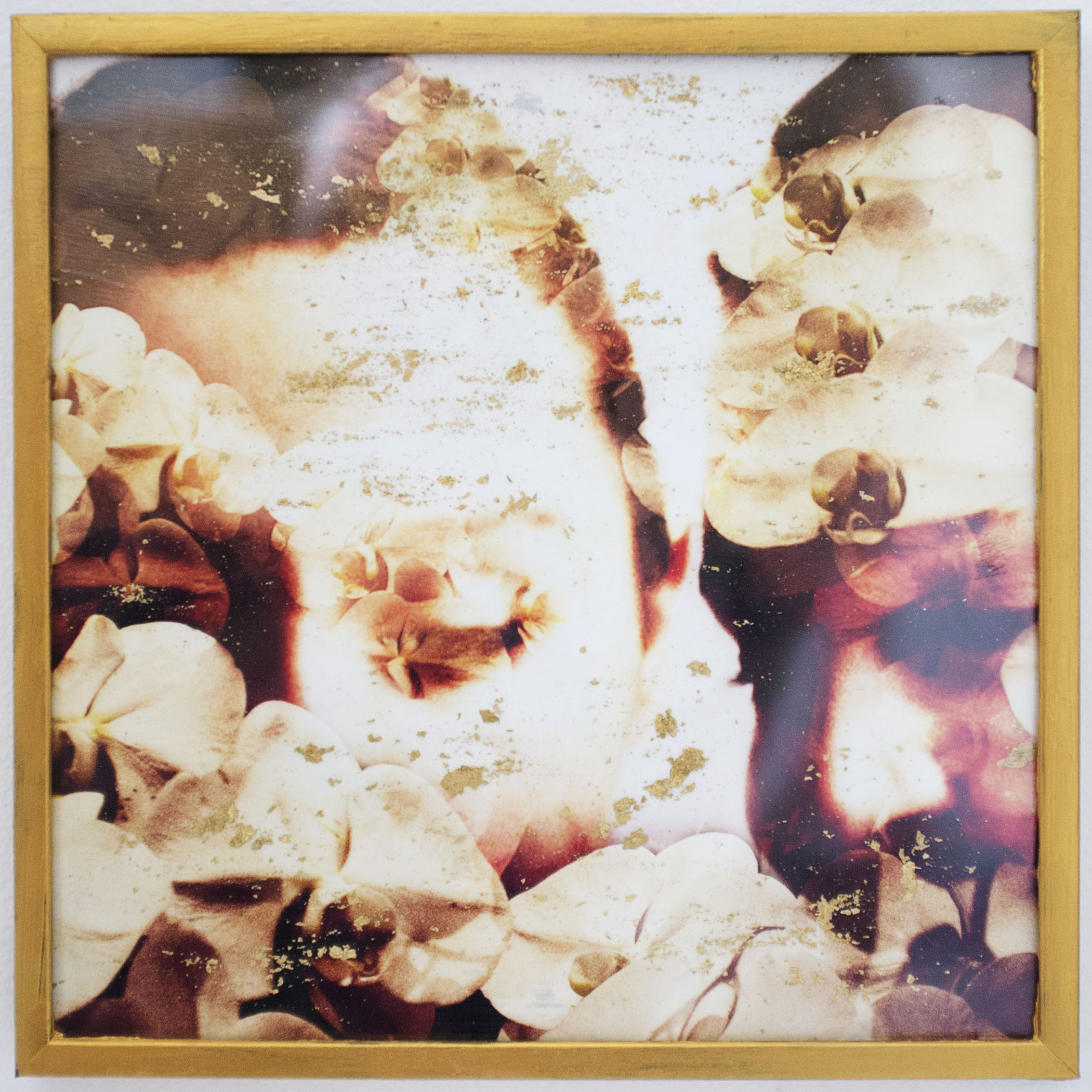 "Fleurs de Dila (1 of 1), 2015  - - - -  5"" x5""$80.00"
