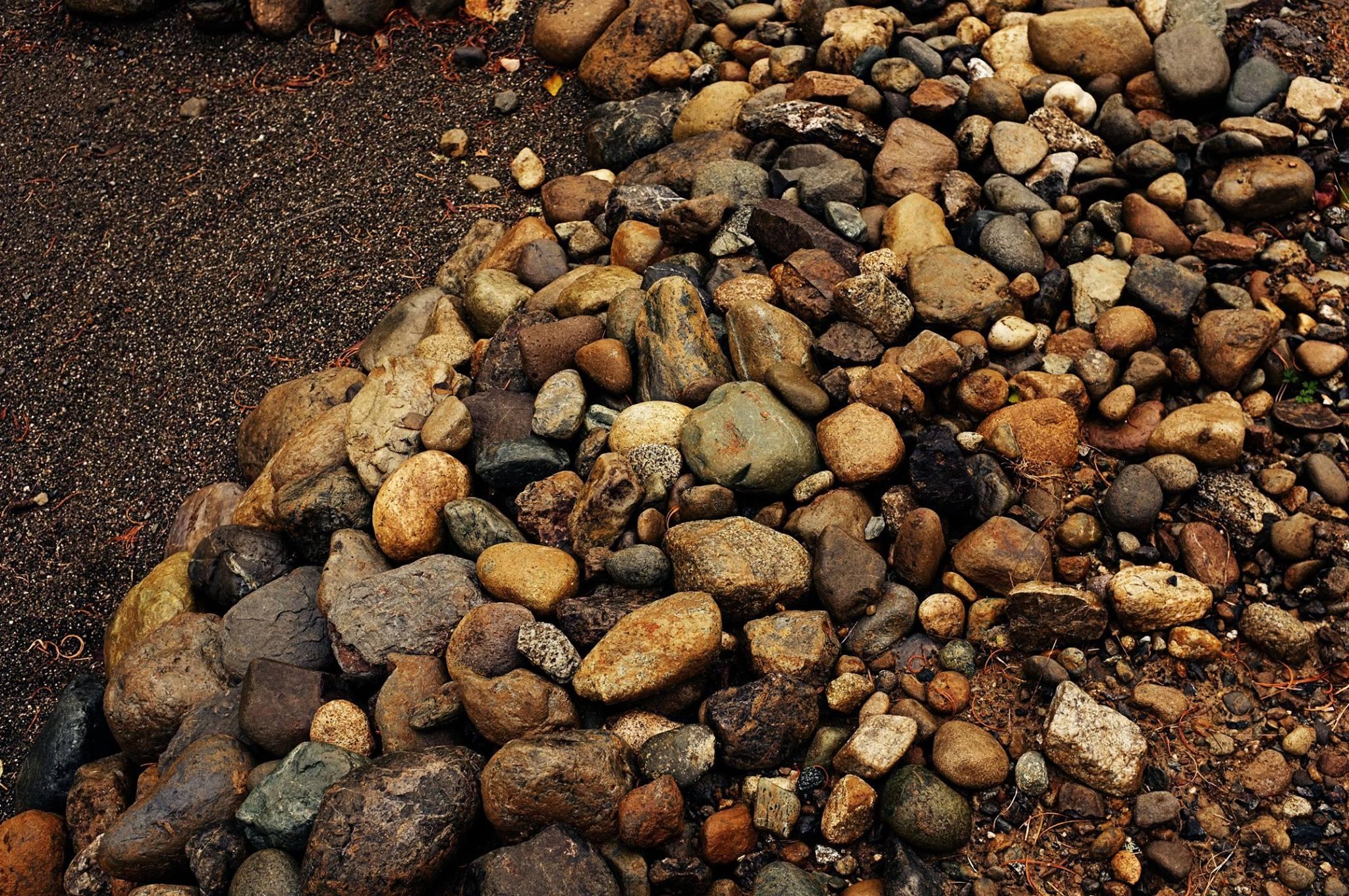 rocks pookie photographer san francisco oakland