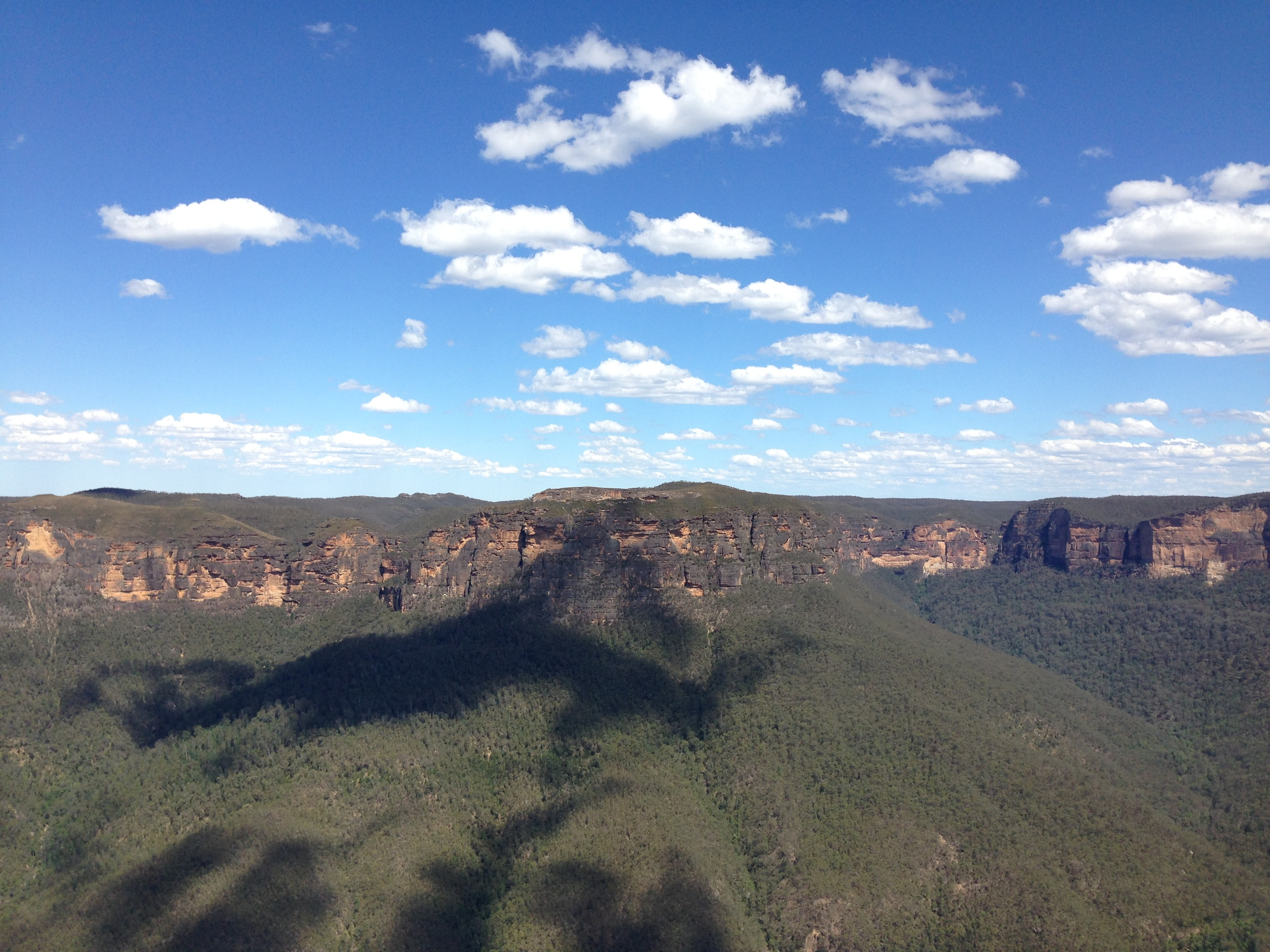 the blue mountains | sally mussellwhite