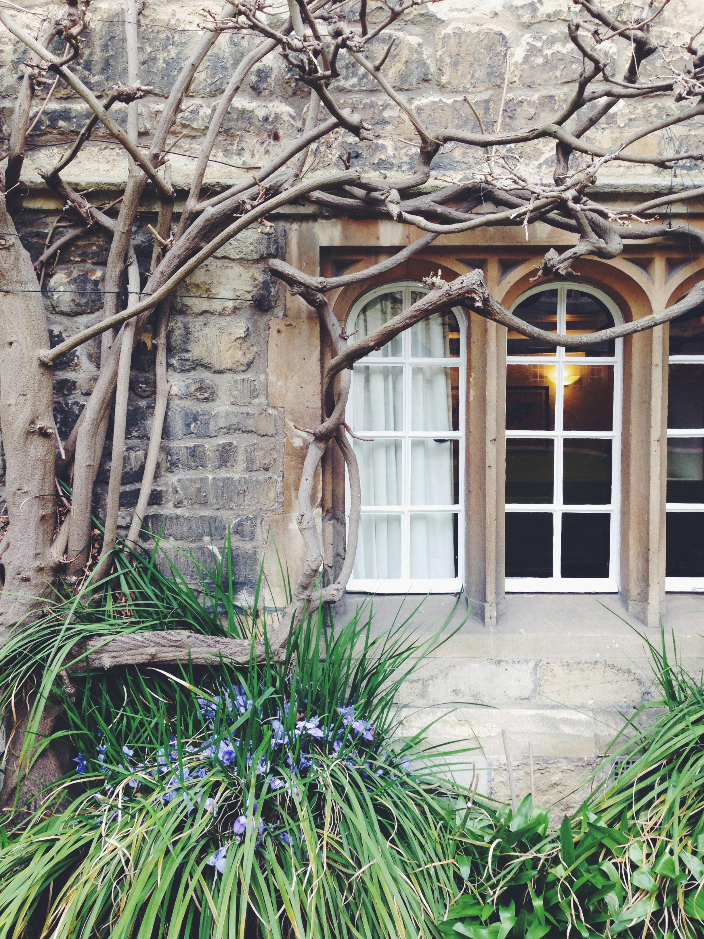 oxford in the spring | sally mussellwhite