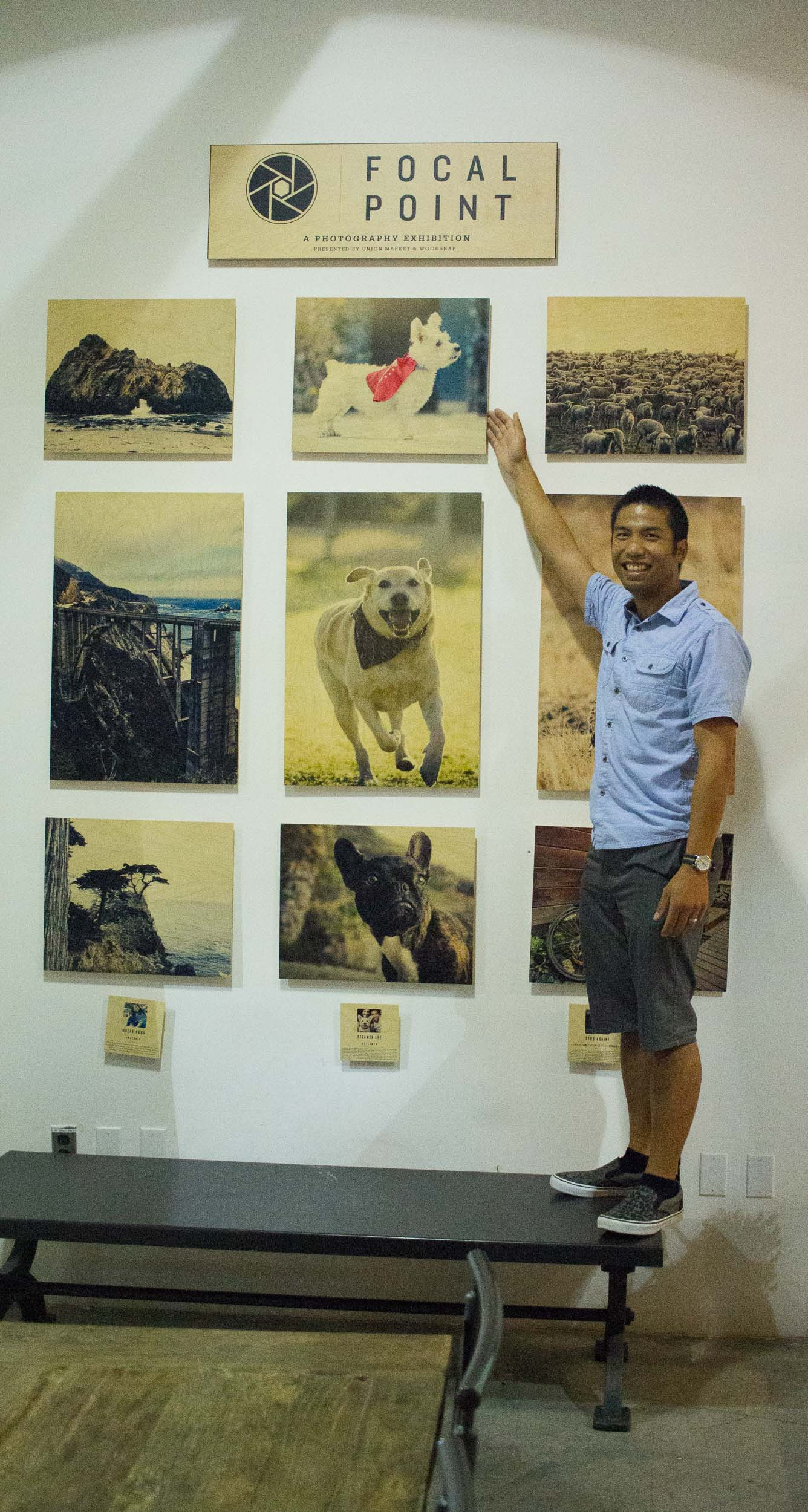 Steamer Lee Dog Photography - Focal Point Mission Viejo WoodSnap Exhibit - 6.jpg