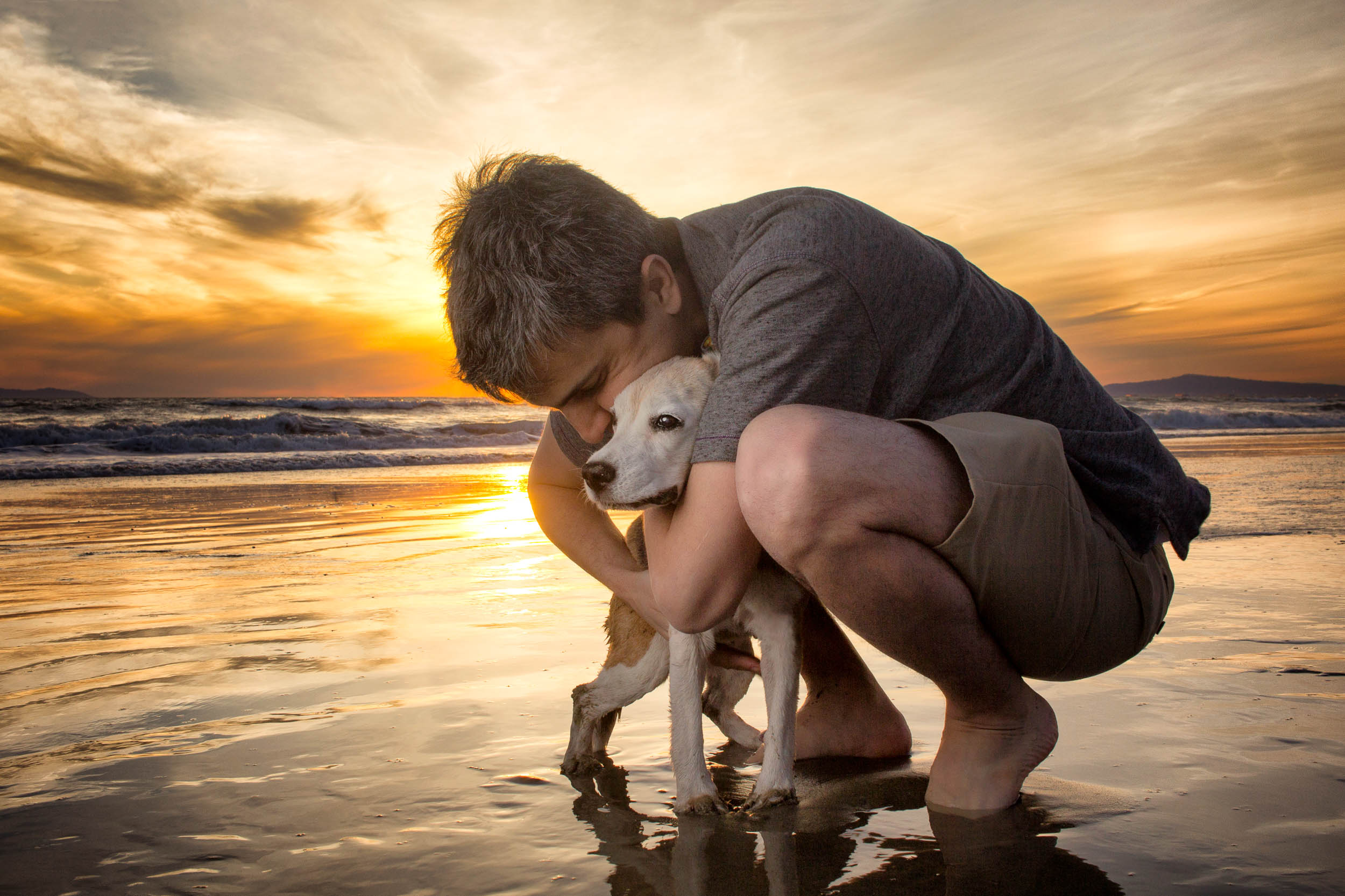 14-Orange-County-Dog-Photography-Pet-Huntington-Dog-Beach-Megan.JPG