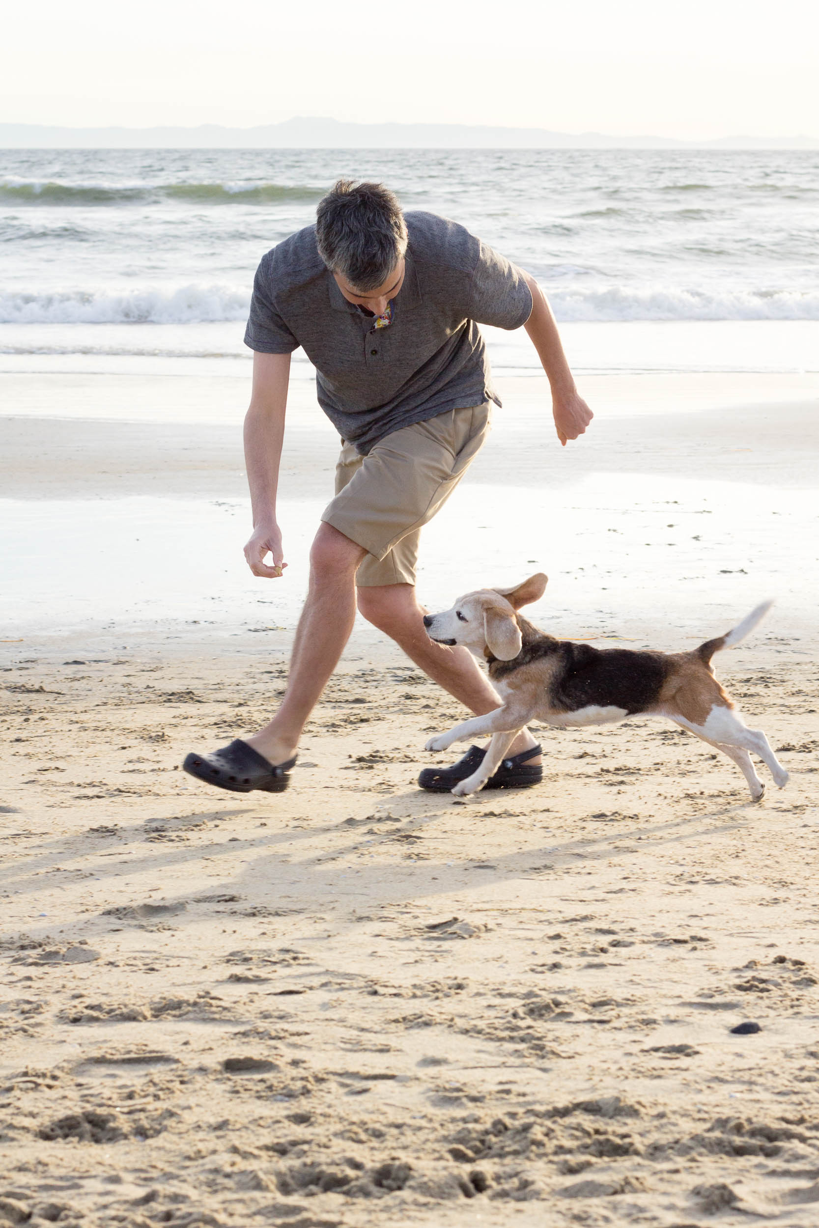 19-Orange-County-Dog-Photography-Pet-Huntington-Dog-Beach-Megan.jpg