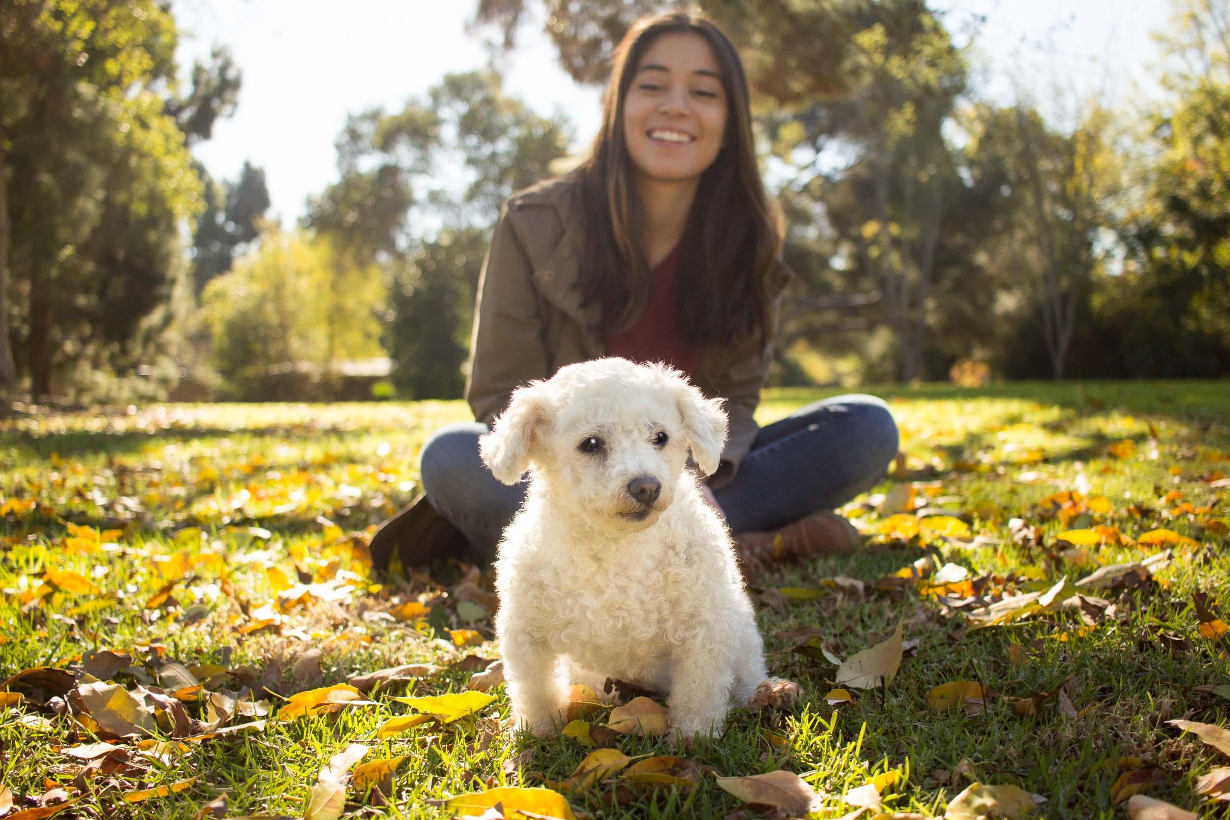 32-Orange-County-Dog-Photographer-Southern-California-Steamer-Lee.JPG