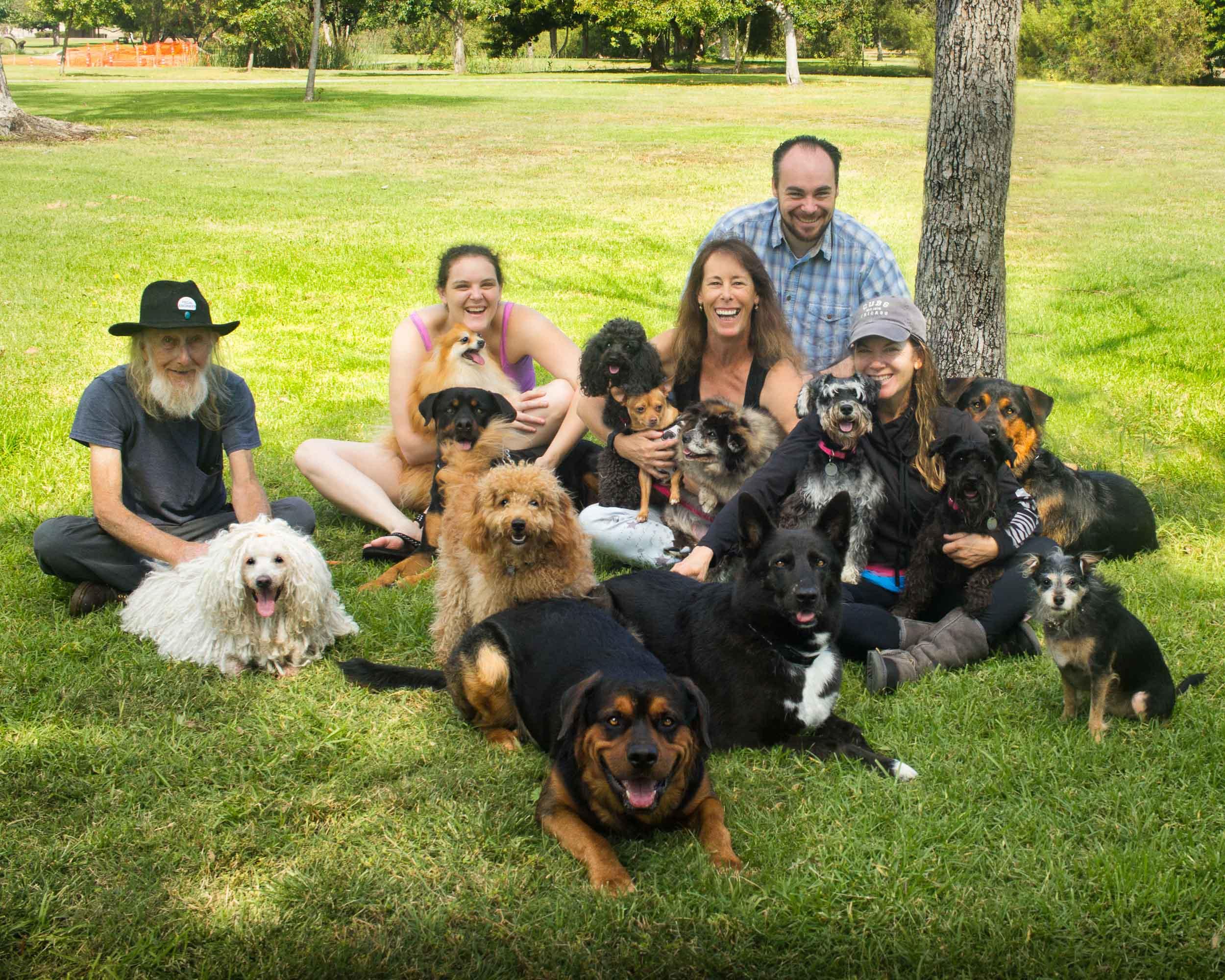 34-Orange-County-Dog-Photographer-Southern-California-Steamer-Lee.JPG
