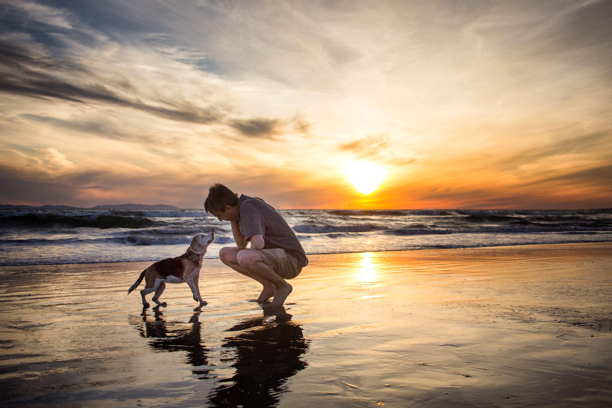 15-Orange-County-Dog-Photography-Pet-Huntington-Dog-Beach-Megan.JPG