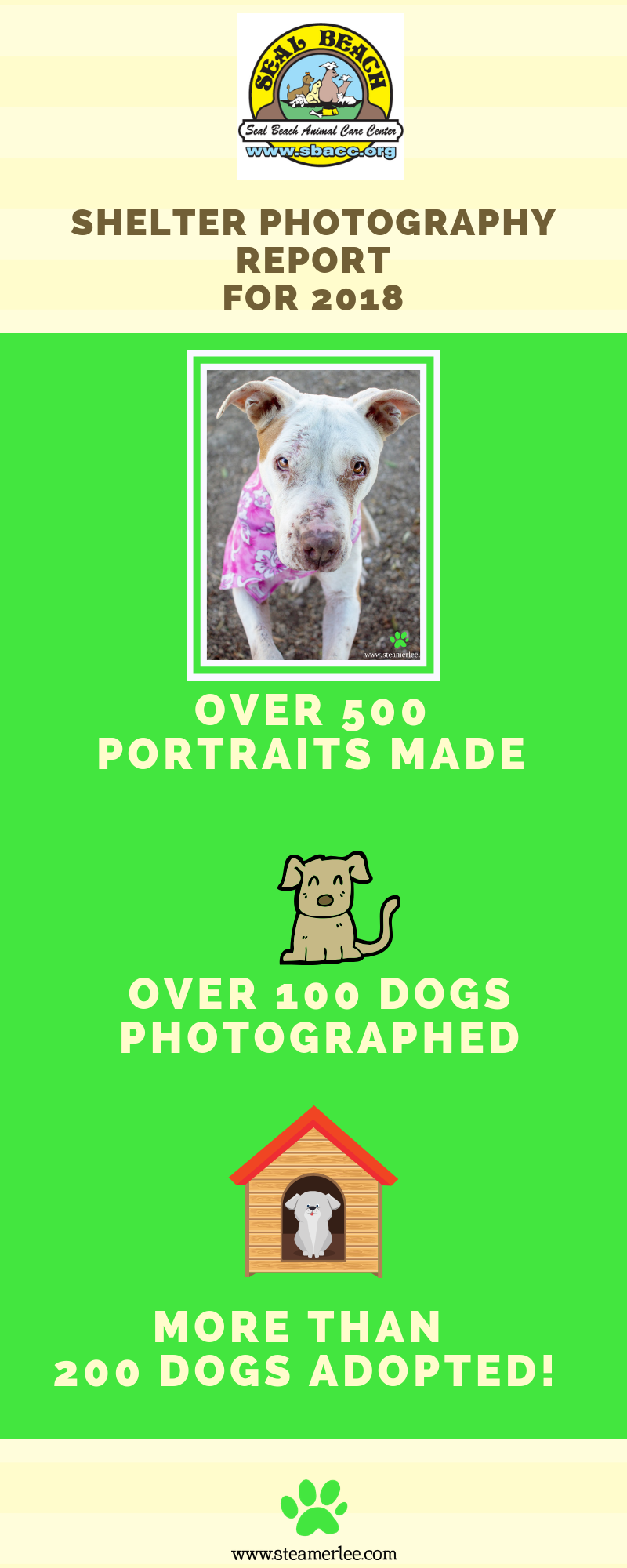 the puppy project.png