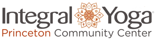 IYPCC Logo6.jpg