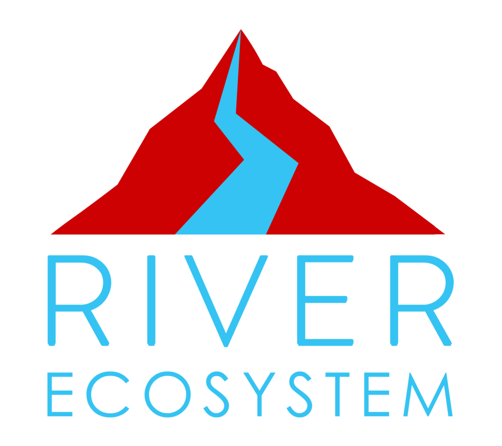 river_ecosystem.png