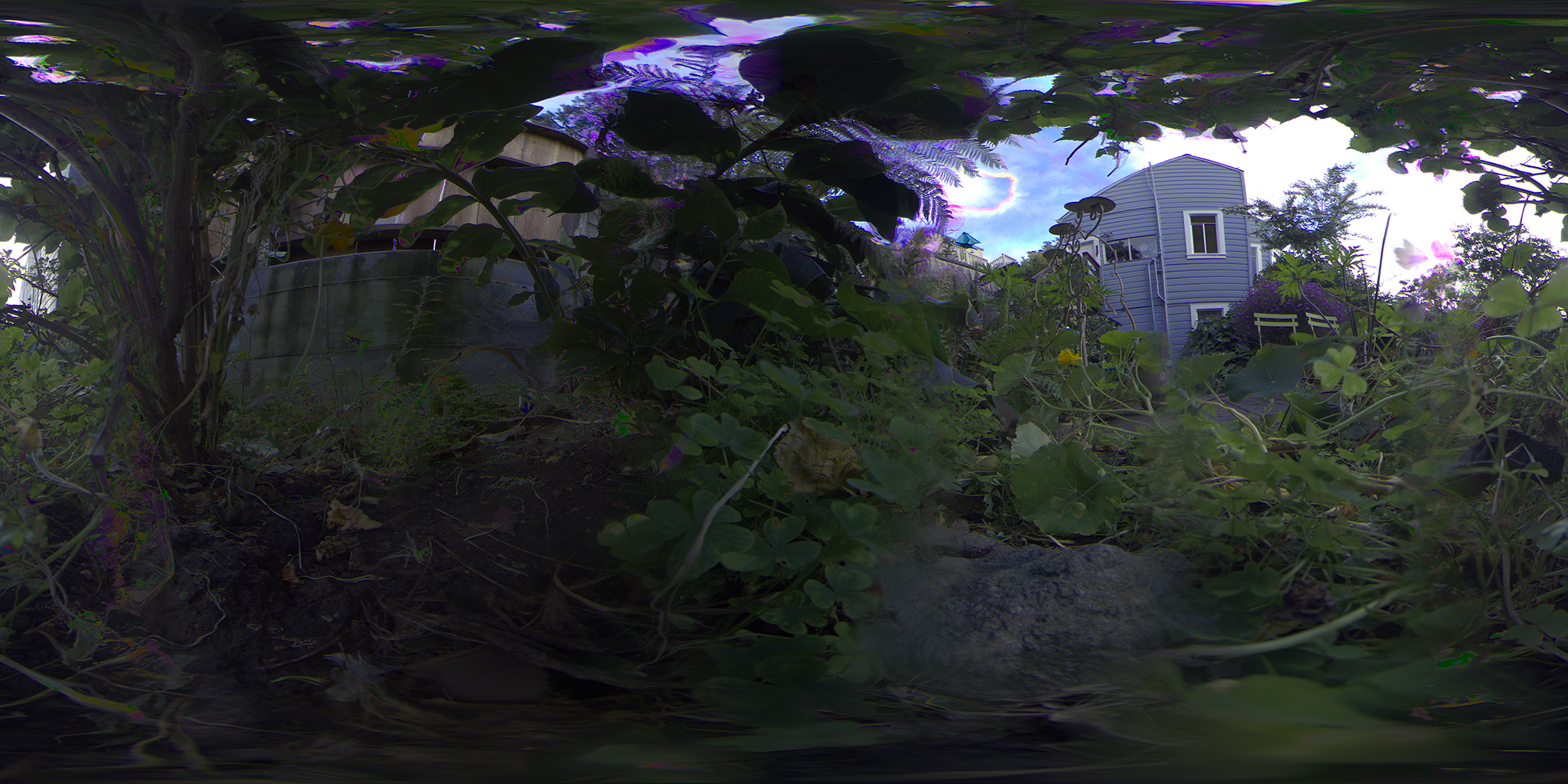 360_bushes_saturated.jpg