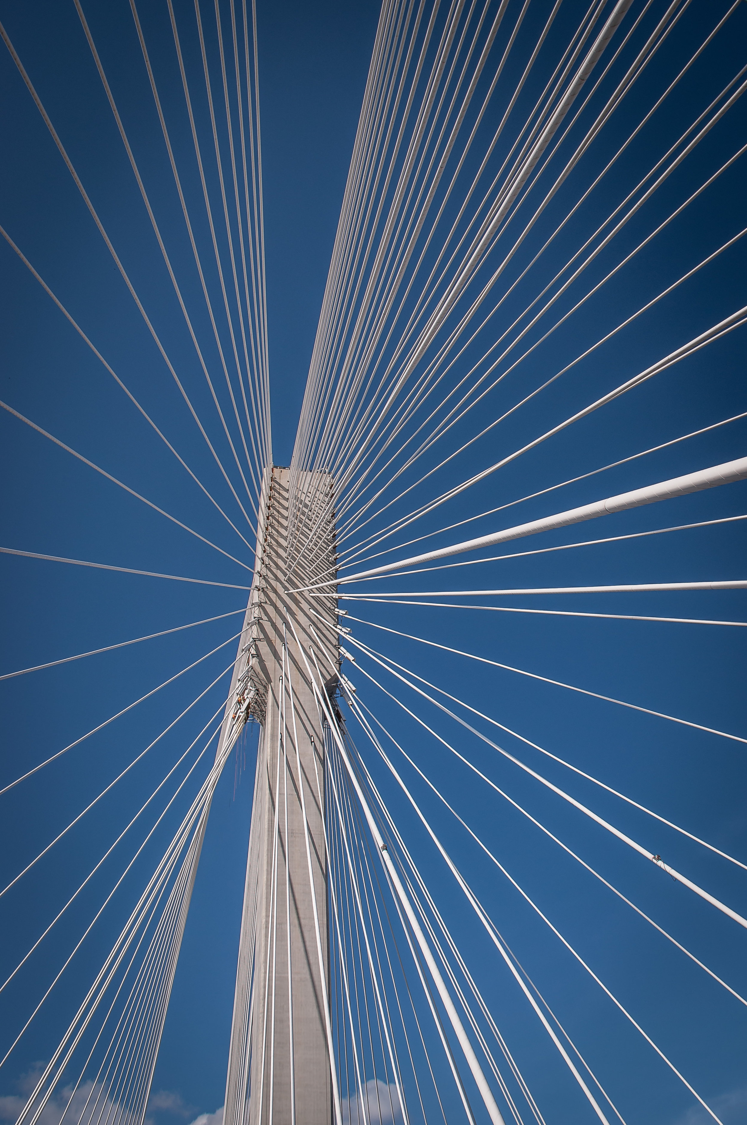 Dozens of cables extruding from the north tower of the Port Mann Bridge. This tower and the second to the south together suspend 10 lanes of traffic, forty-two meters above the Fraser River.  Coquitlam BC, Canada   PURCHASE PRINT