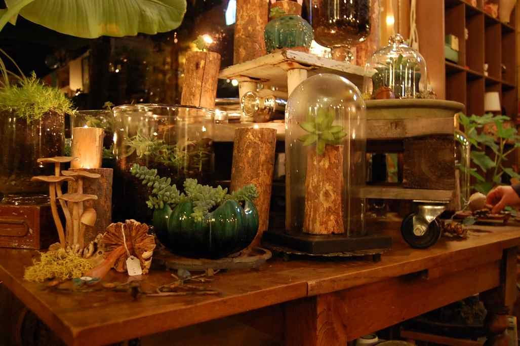 shop-n-sip november 2011 042.JPG