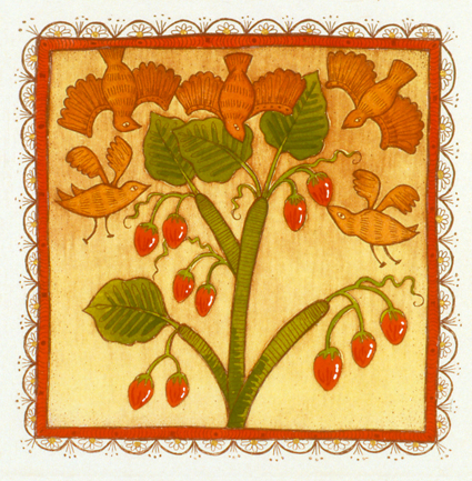 tamarillos with hungry birds  hand coloured etching 10 x 10cm