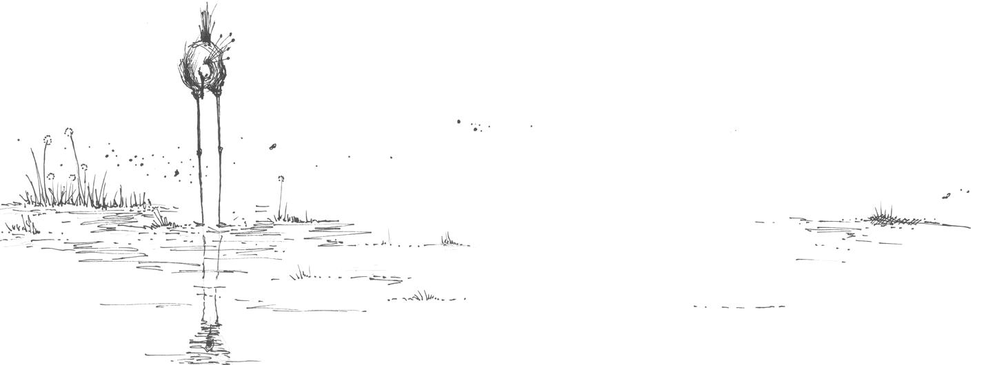 Sarah Pierroz Sketch of Venetian History Lagoon