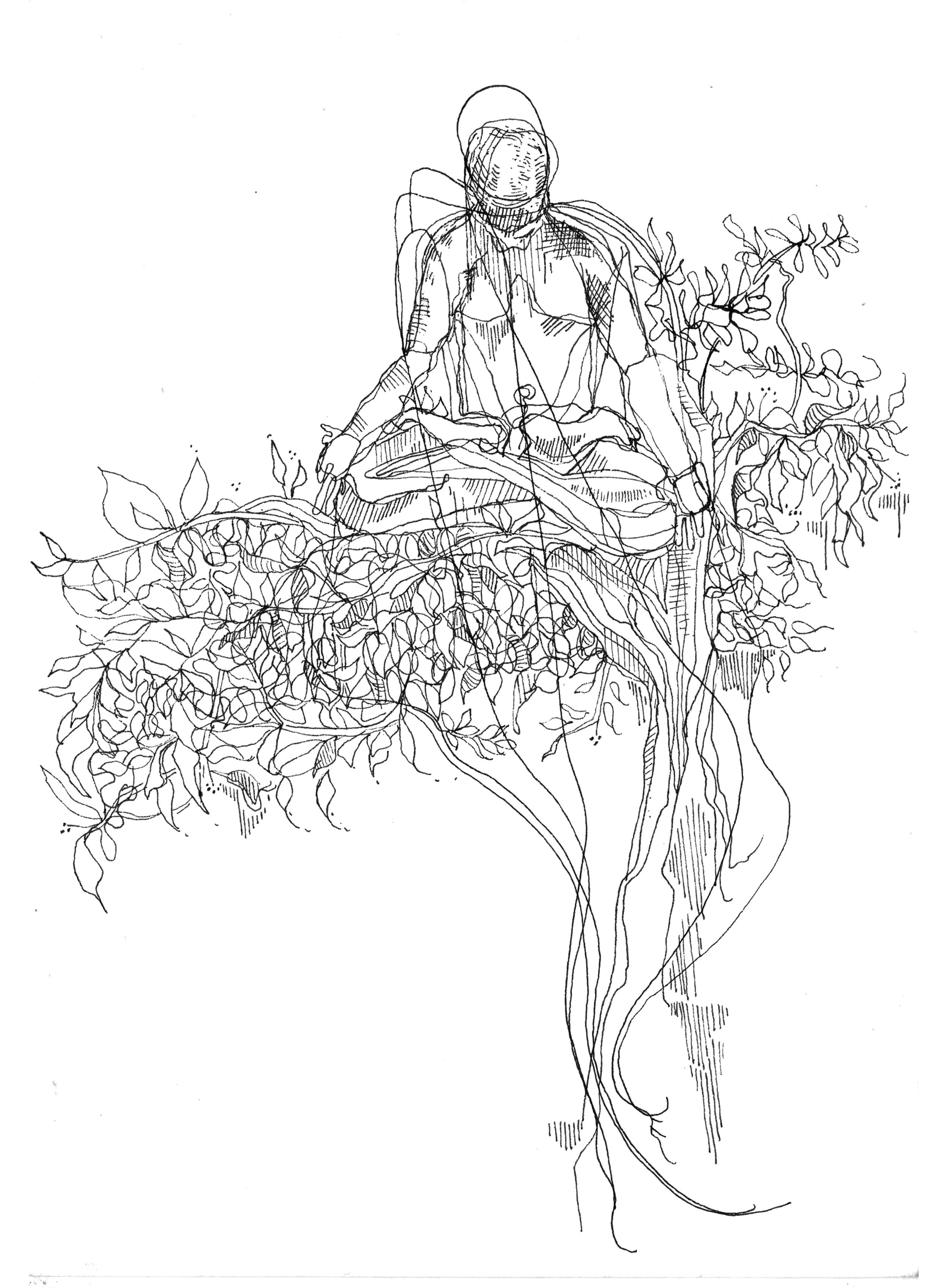 one yogi in a tree