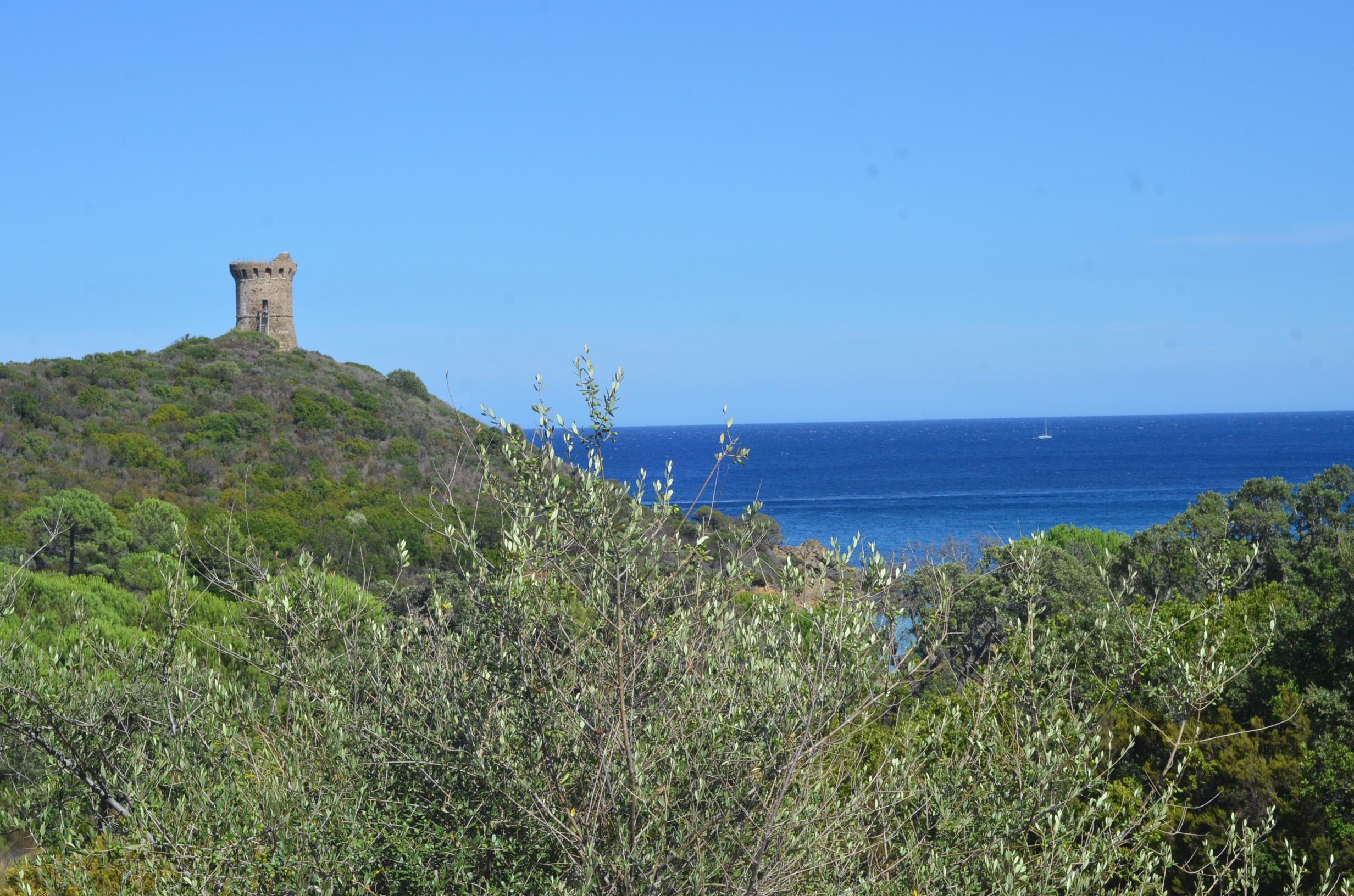 SardiniaCorsicaPhotosSPI_2368 copy.JPG