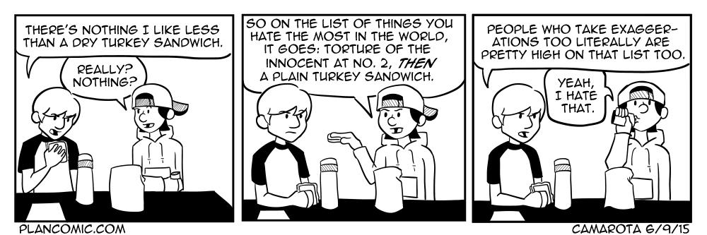 6-9 Turkey Sandwich.jpg