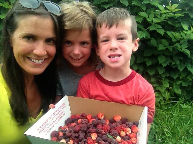 Three pounds of raspberries