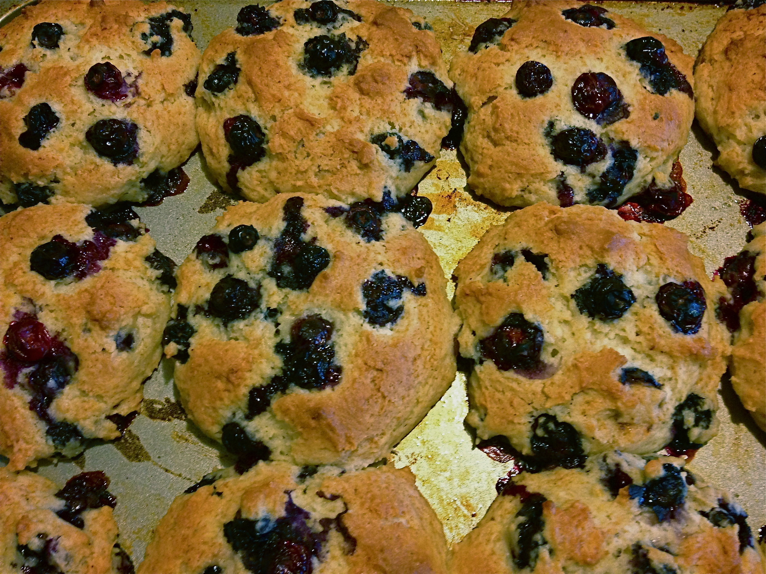 Finished product: Blueberry muffins