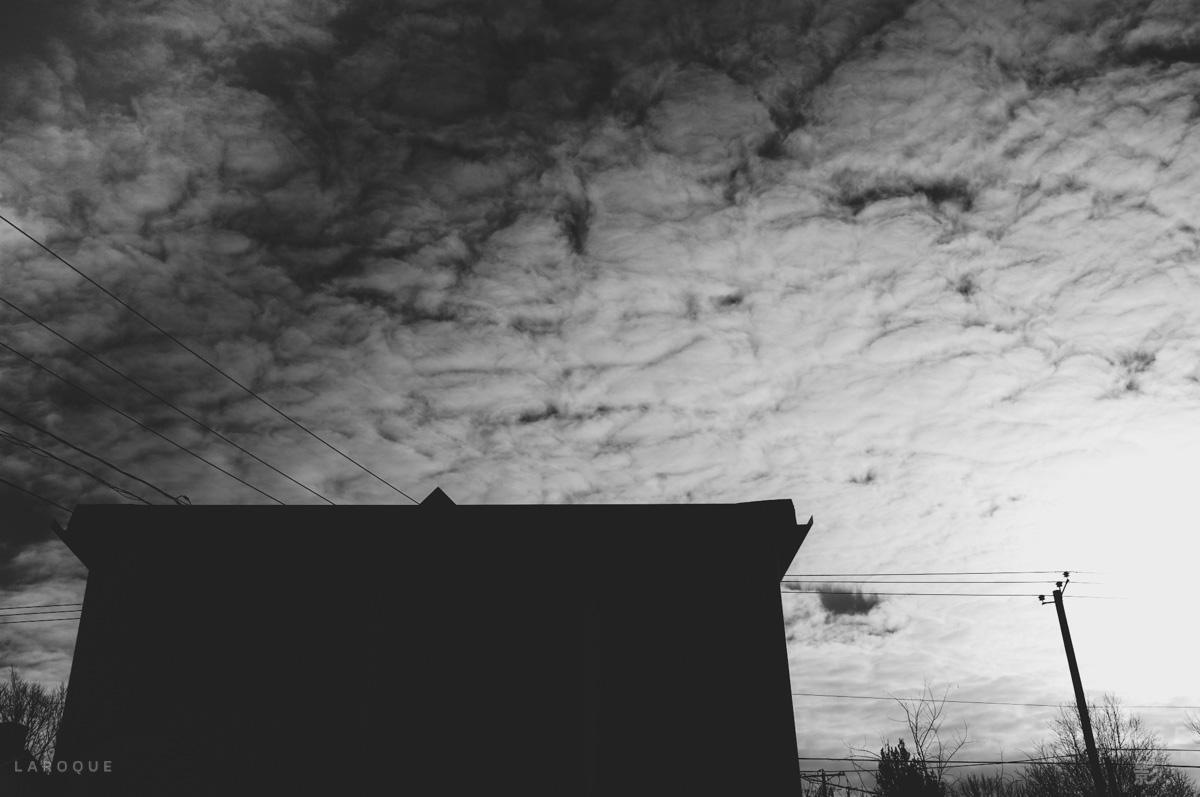 LAROQUE-dustbowl-01.jpg