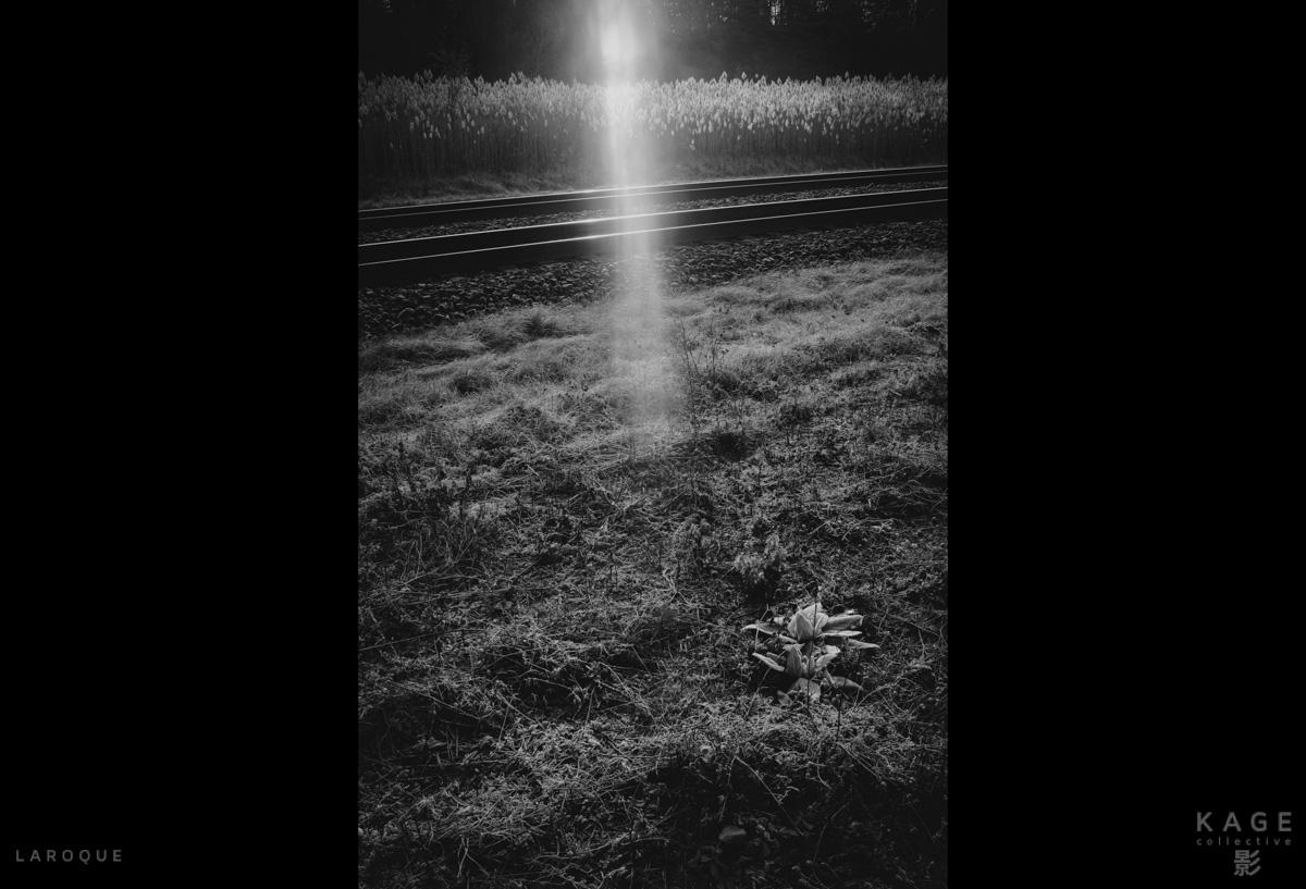 LAROQUE-dustbowl-11.jpg