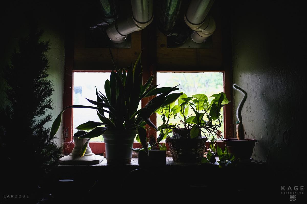LAROQUE-sanctuary-09.jpg