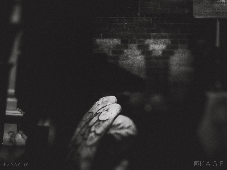 LAROQUE-veil-05.jpg