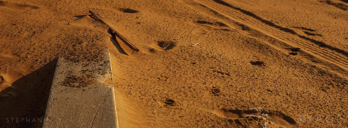 STEPHANI-desert-03.jpg