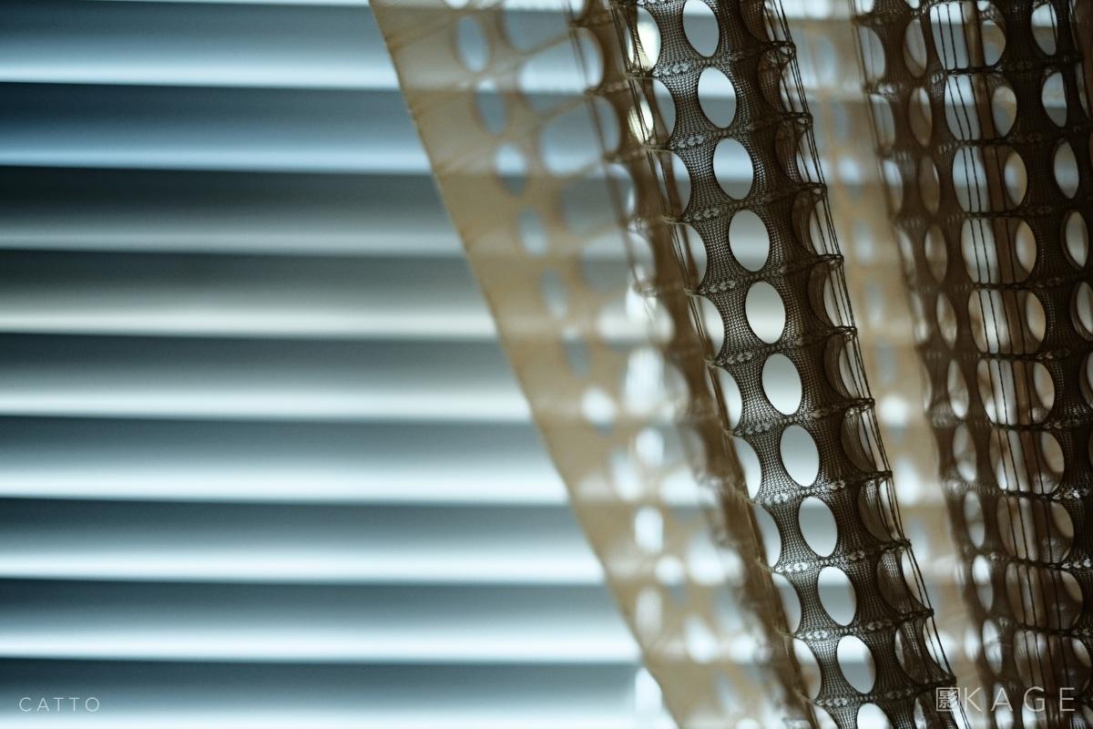 RC18CA 5438 NBP © Robert Catto Not Print Quality.jpg