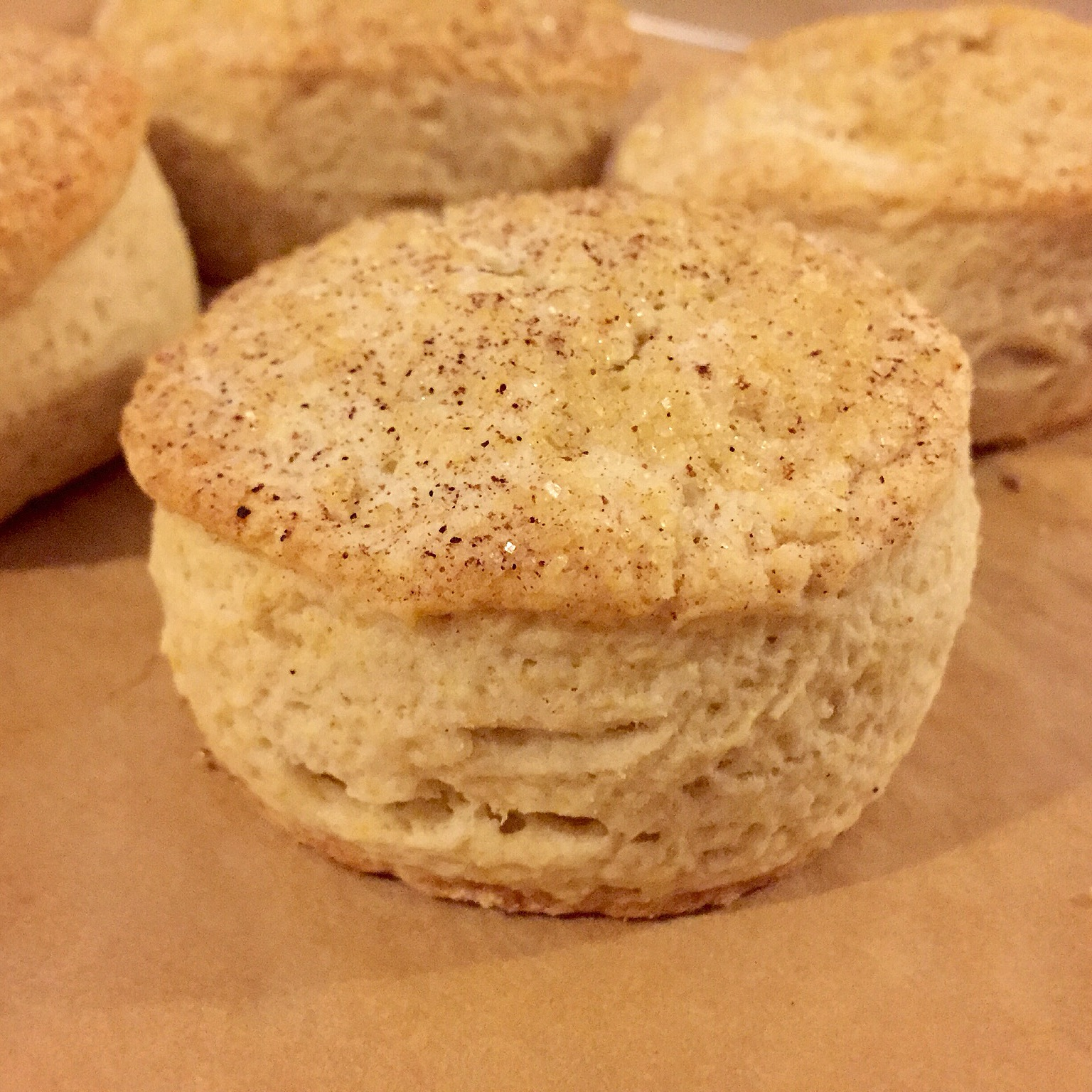 biscuit 2.jpg