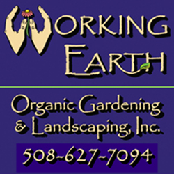 working earth.jpg