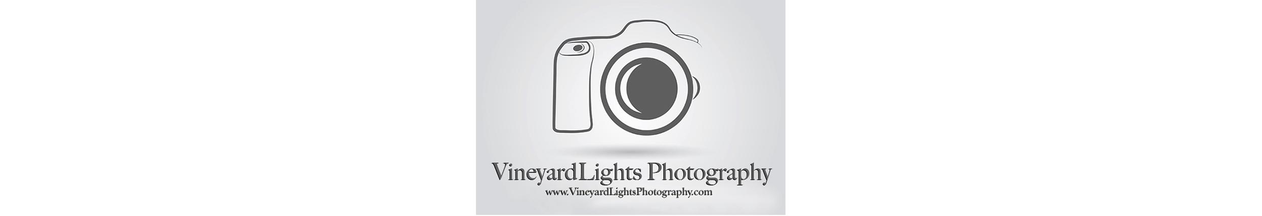 sb_vineyardlights.jpg