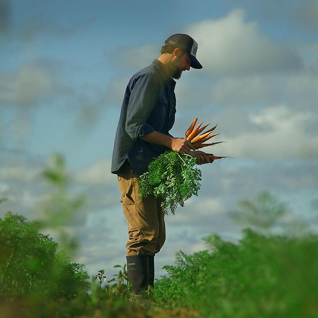 Farmer%27sShortsWEWANT.jpg