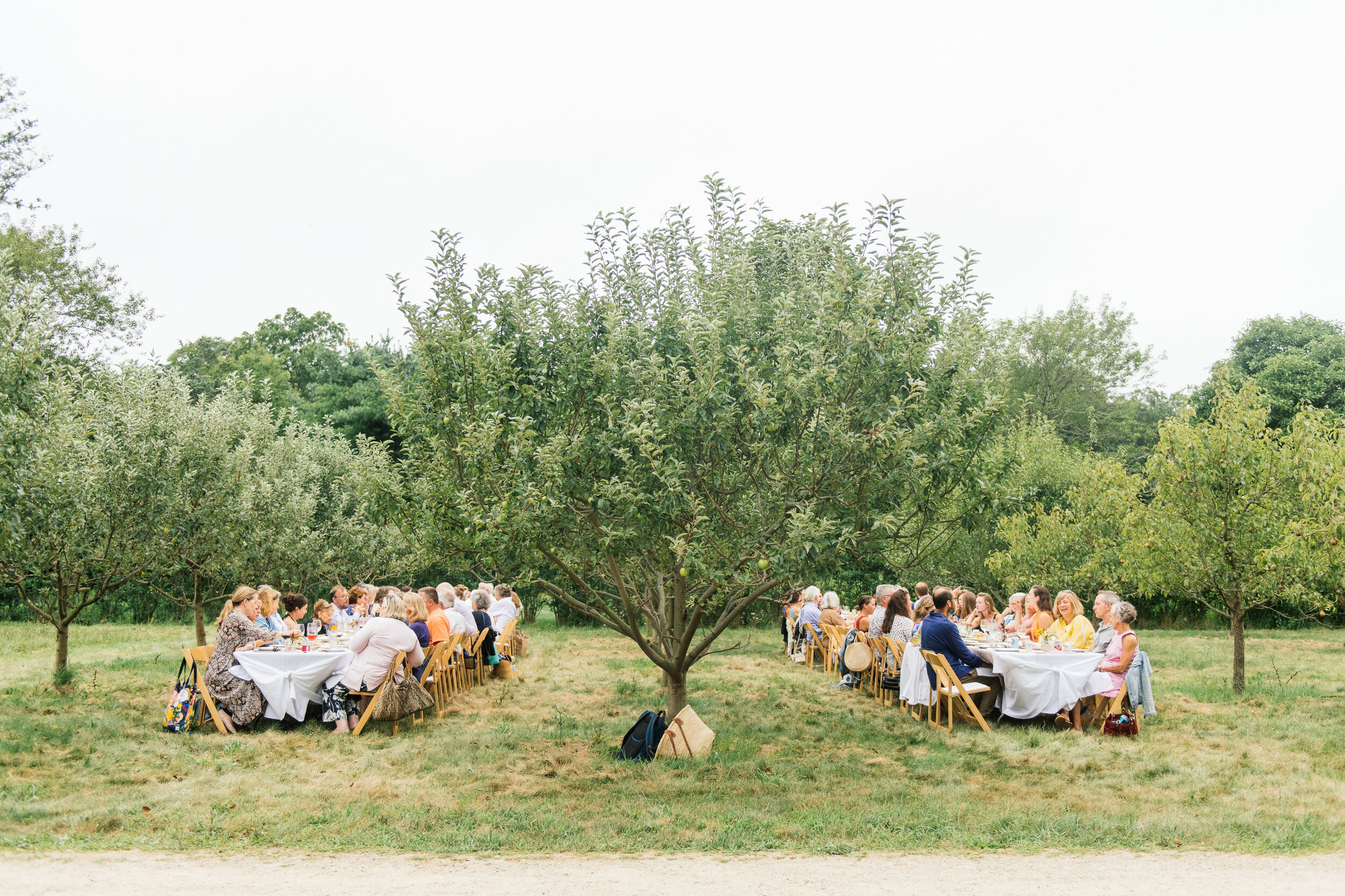 Special Event: Dinner by Chef Flynn McGarry before a screening of CHEF FLYNN at the Grey Barn and Farm. Photo by Gabriela Herman.