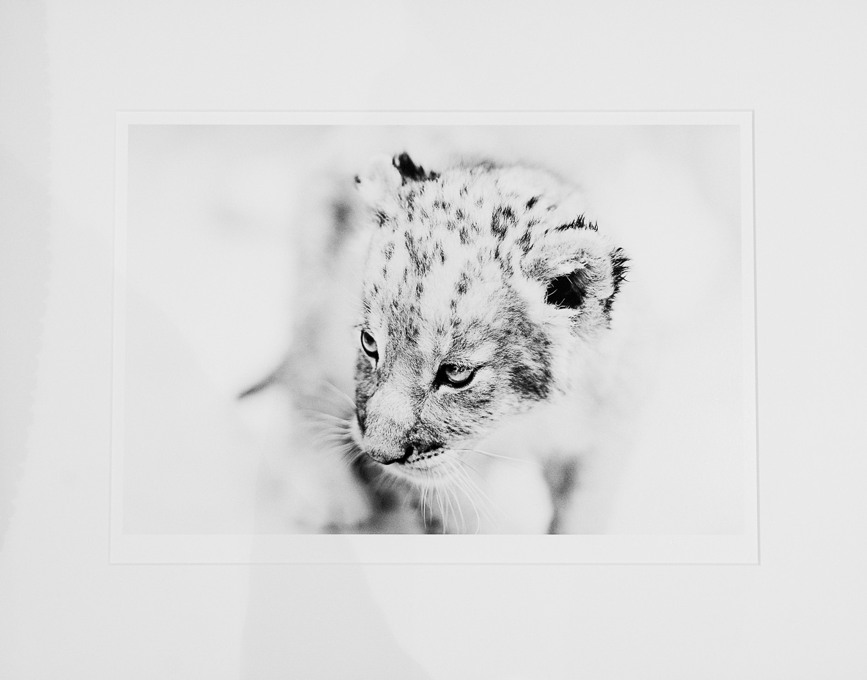 My Prints -051.jpg
