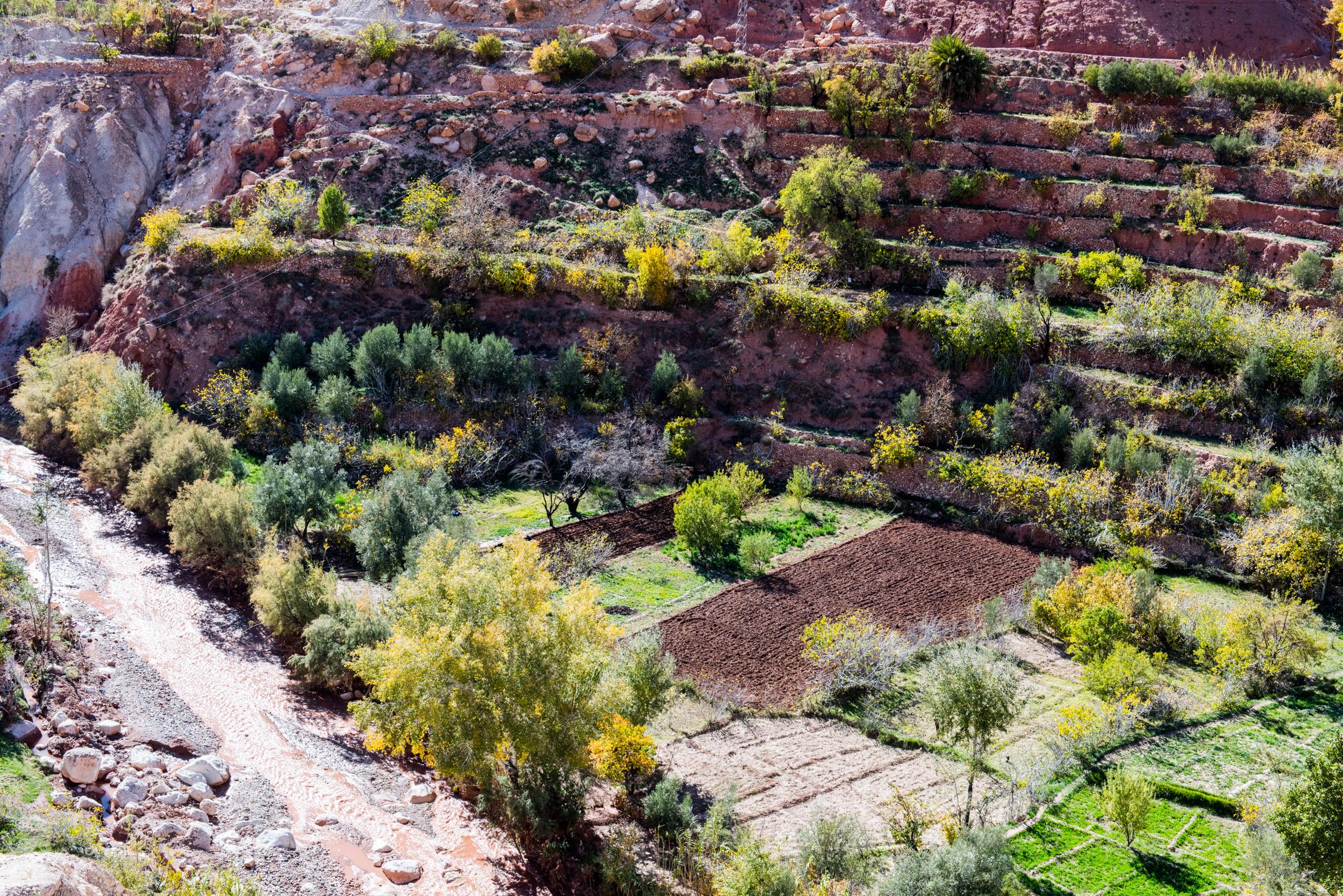 Morocco With Katie Nov 2014-129.jpg