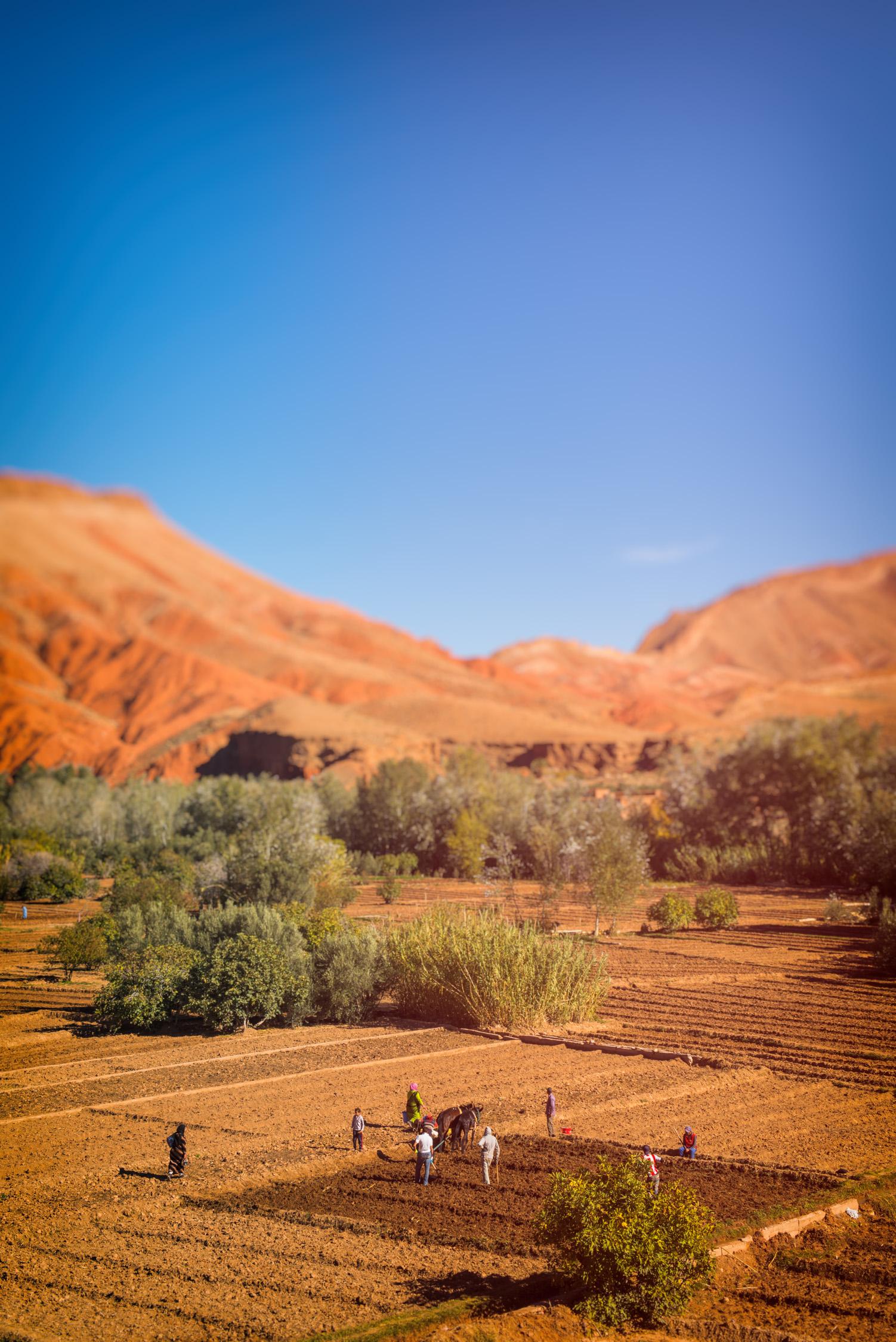 Morocco With Katie Nov 2014-159-Edit.jpg