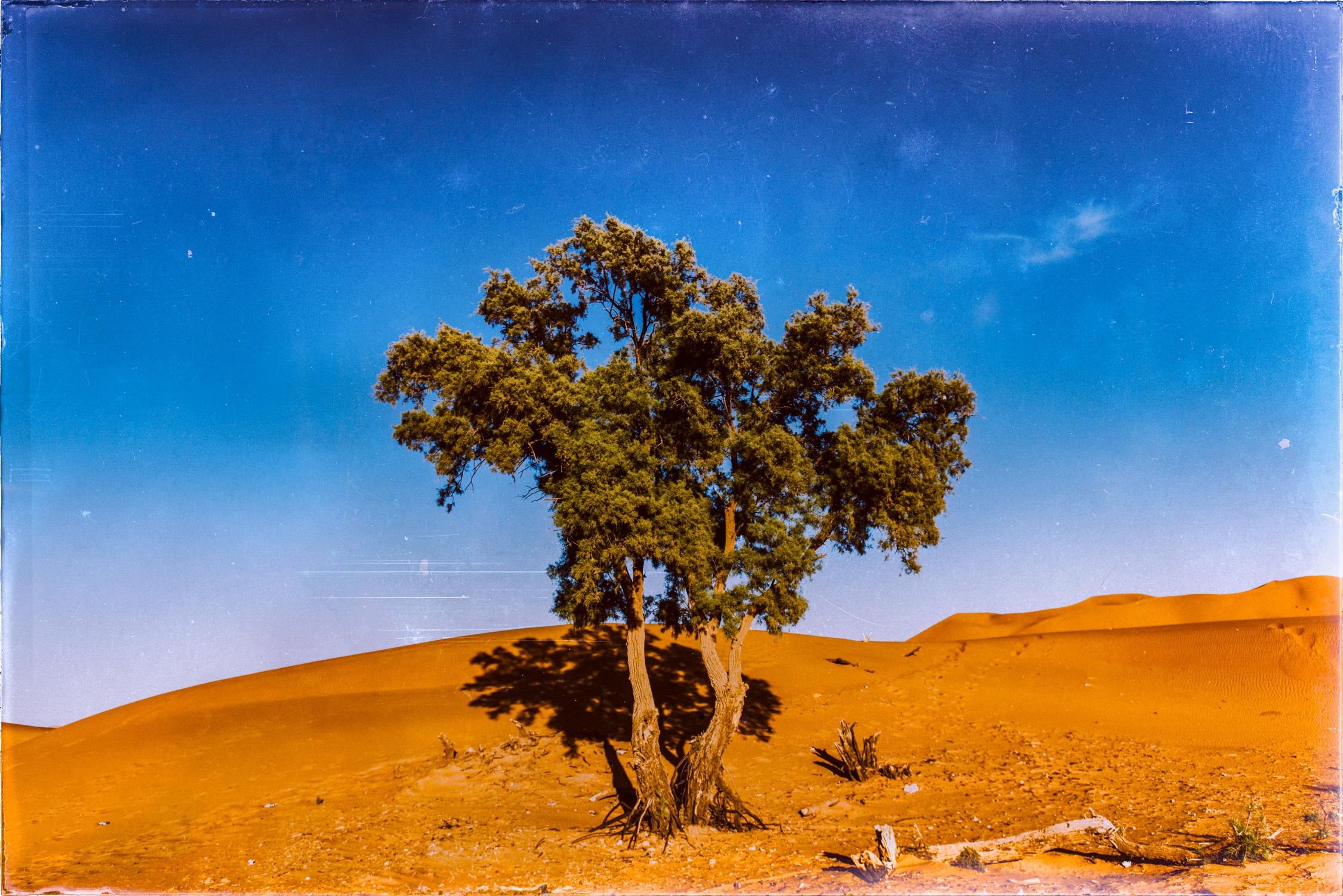 Morocco With Katie Nov 2014-194-Edit.jpg