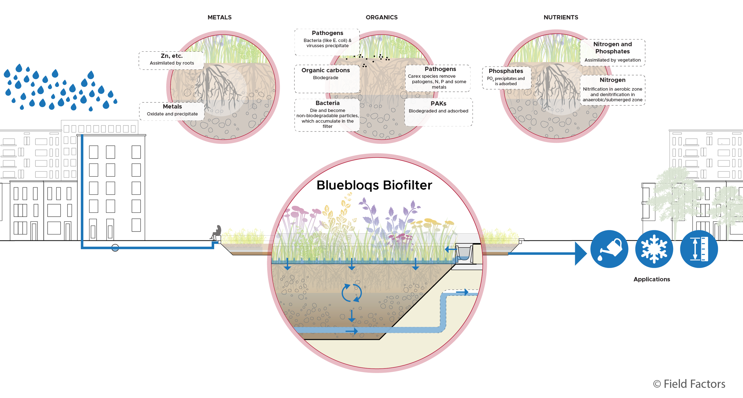 Performance of Bluebloqs Biofilter