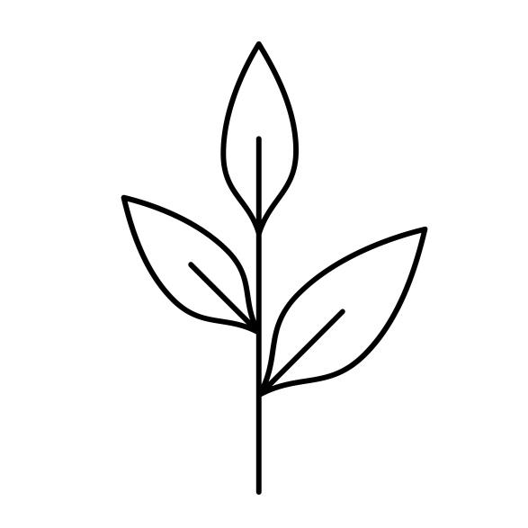 noun_Plant_1466725.jpg