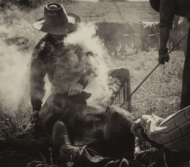 western4.jpg