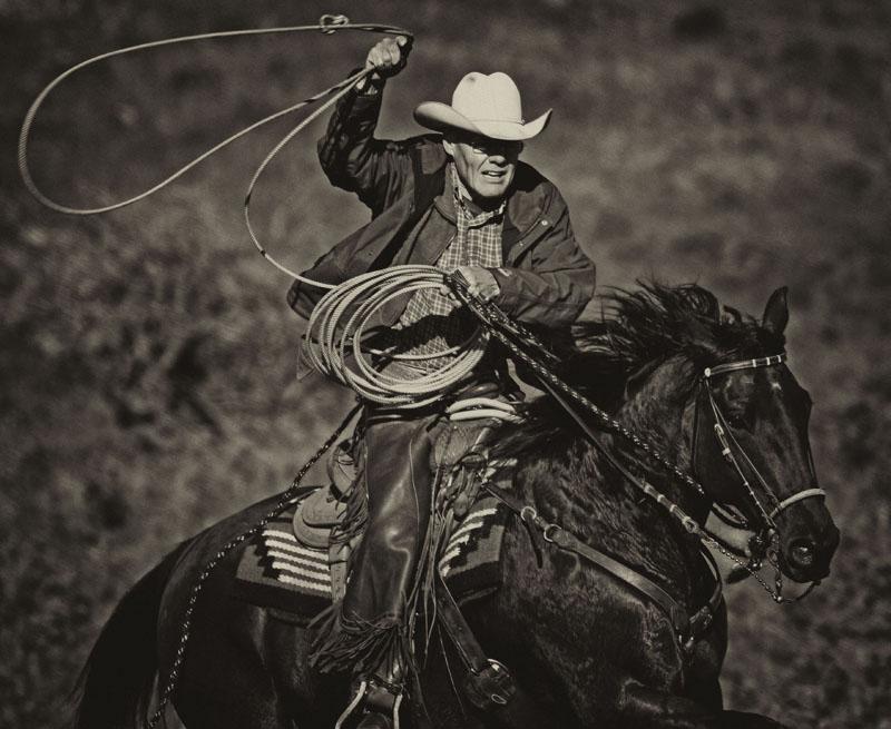 western17.jpg