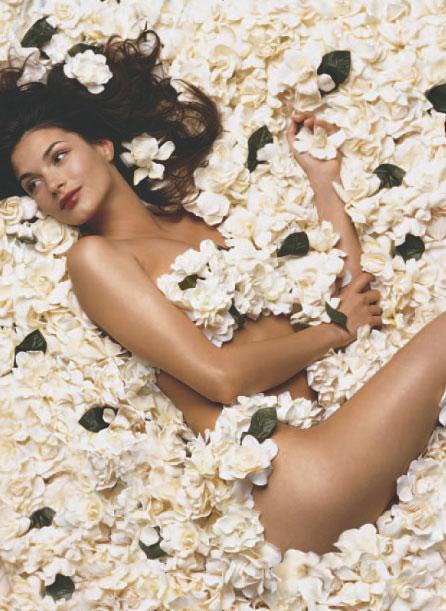 gardenia-low-res-w-dawn-retouch.jpg