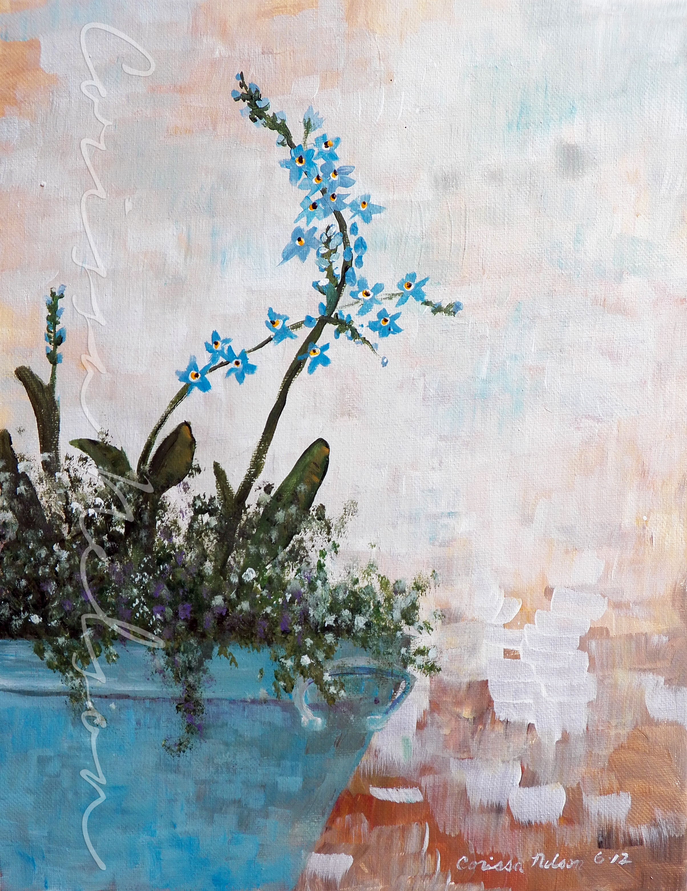 Forget-Me-Nots and Alyssum