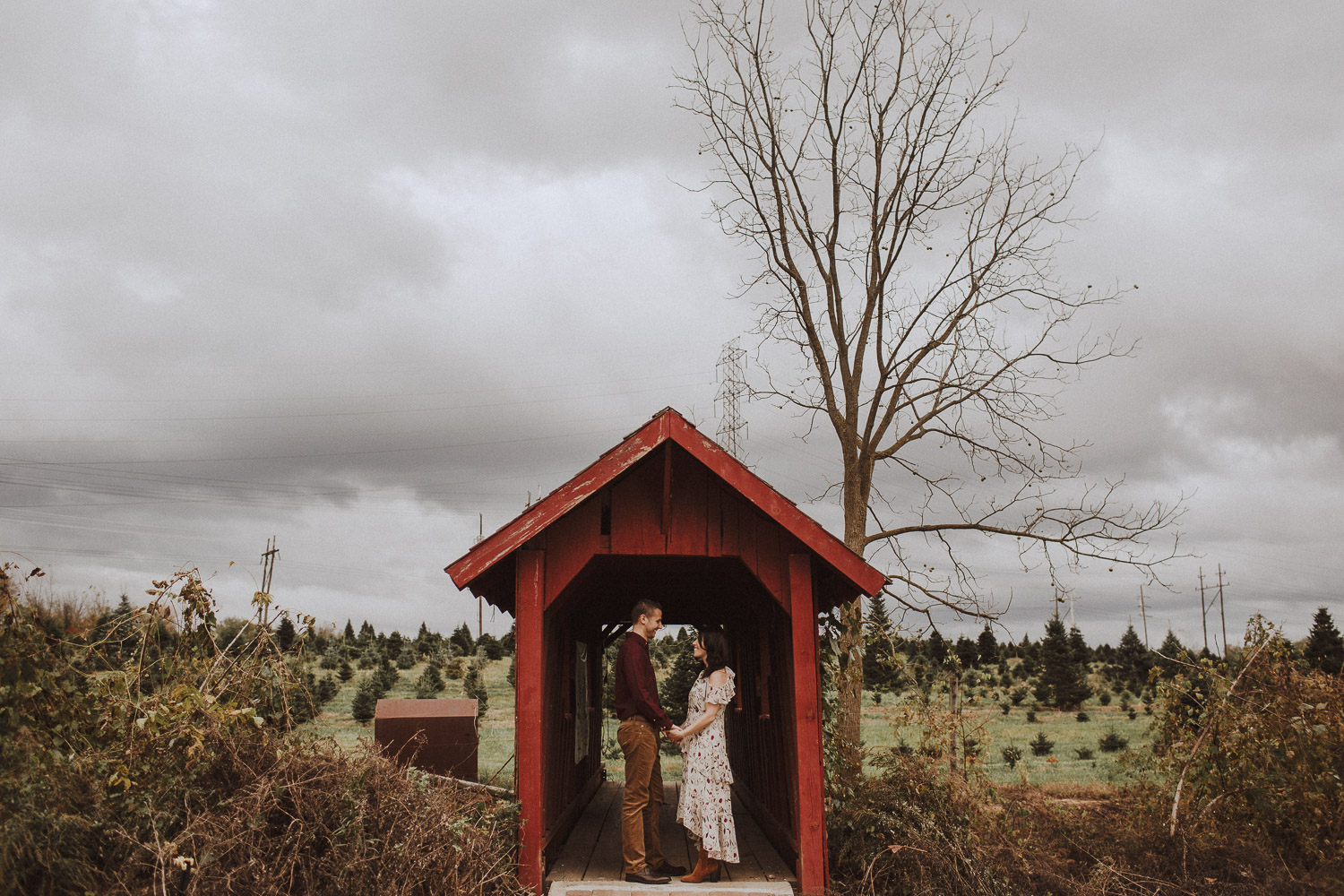 Christmas Tree Farm Engagement Session in New York City