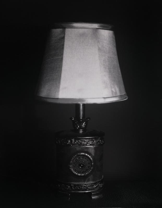 Camera:Orbit 4x5  Film: Ilford Photo Paper  Scanner: epson V500